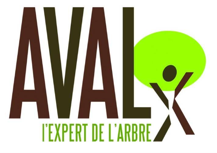 Logo Aval